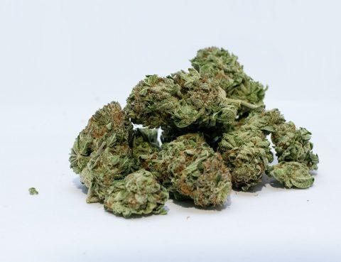 wiet, marihuana, hennep